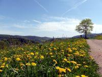 Panoramaweg_Retreat_f